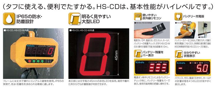 デジタルホイストスケールHS-CD