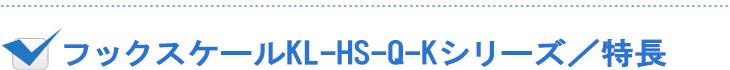 デジタルフックスケールKL-HS-Q-K