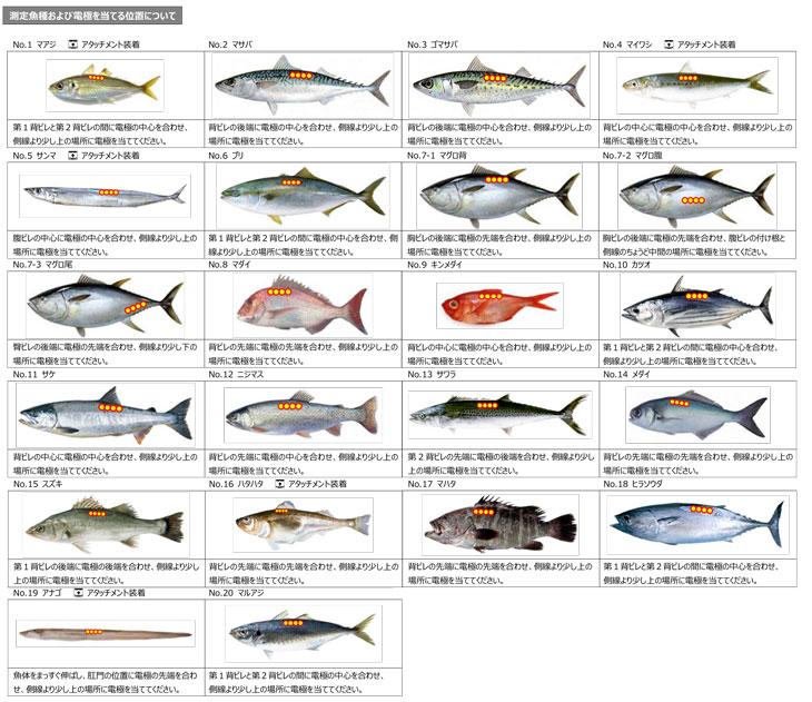 フィッシュアナライザ DFA100/DFA110  20魚種
